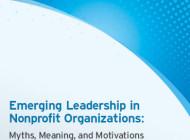 Liderazgo emergente en organizaciones no lucrativas