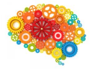 brain-300x2251