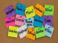 Una clave para ser feliz: !practica la gratitud! (I)