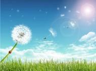"""Aprende a Fluir : Introduce  la experiencia de  """"Flow"""" en tu vida para aumentar tu felicidad y tu creatividad"""