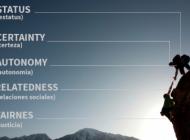 Modelo SCARF: 5 elementos para mejorar tus resultados basados en el neuroliderazgo